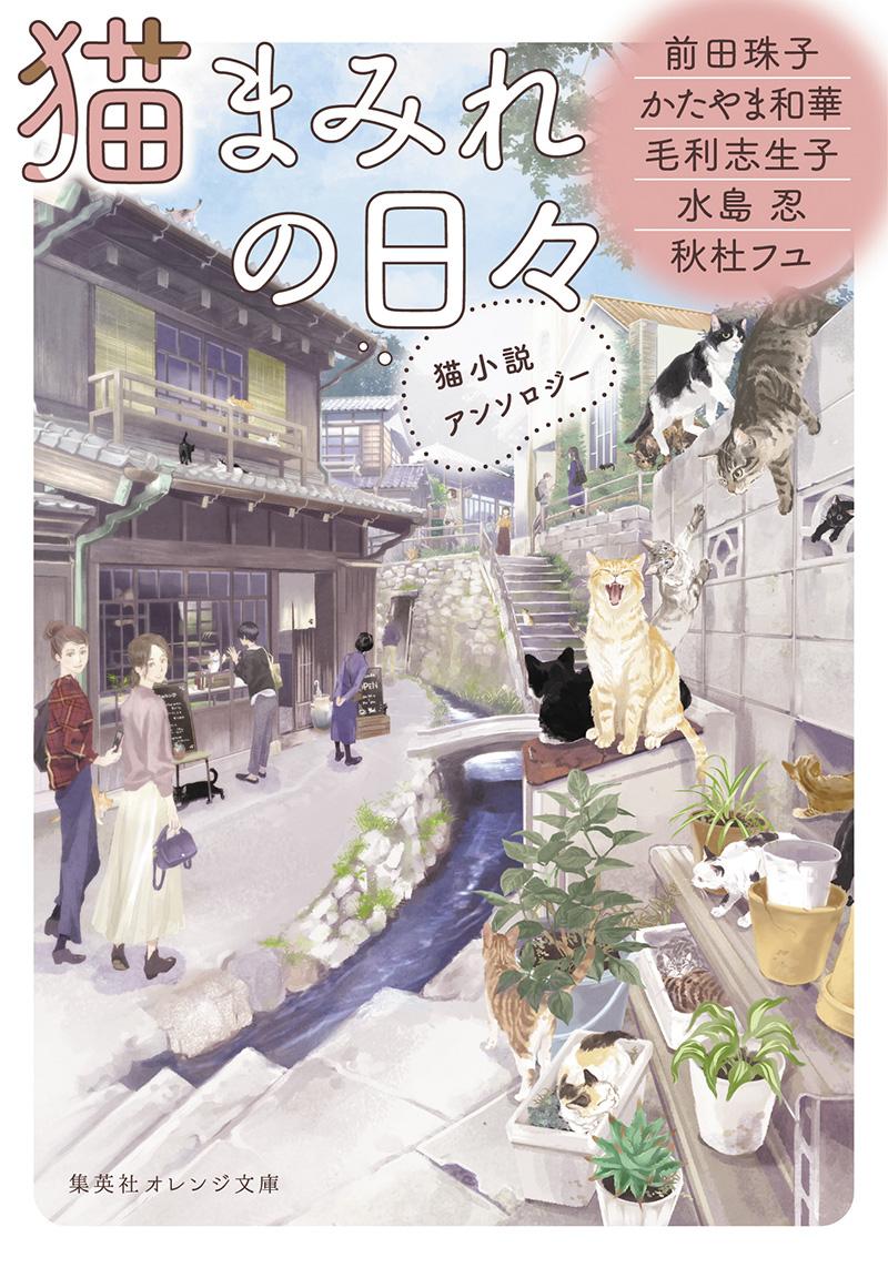 201812月刊猫まみれの日々